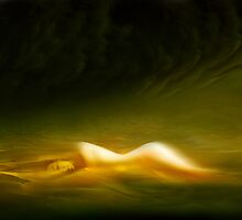 Spirit of the Sands by Igor Zenin