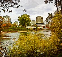 The Forks, London, Ontario by Wib Dawson