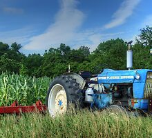 Ford 5000 Tractor by bacchus213