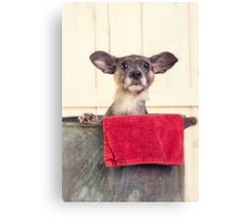 Puppy Bath Time Canvas Print