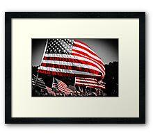 Stars & Stripes Framed Print