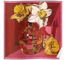Narcissus in Pink Poster