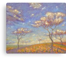 HOME OF COLORED CLOUDS. 2013 Canvas Print