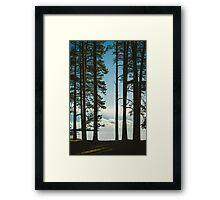 Jutviken II Framed Print