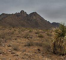 Organ Mountains - New Mexico by Richard Thelen