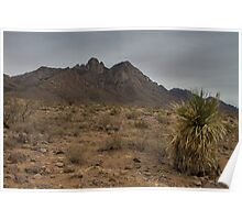 Organ Mountains - New Mexico Poster