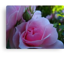 Blessings from nature Canvas Print