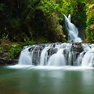 Elabana Falls, Lamington National Park, Queensland, Australia by Michael Boniwell