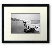 Standing in the Water Framed Print