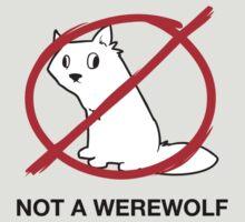 A Regular Wolf is Not a Werewolf by ArgyleWerewolf