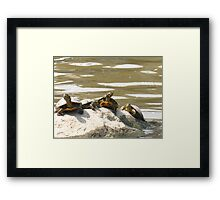 Filling up with Shell Framed Print