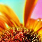 Flower3 by ARTphotographix