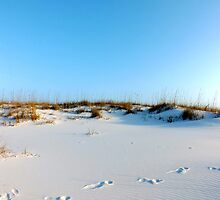 Typical Beach Photo by ARTphotographix
