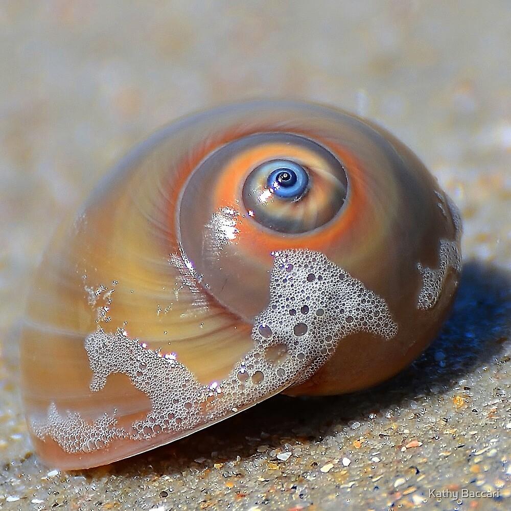 Beach Jewel by Kathy Baccari
