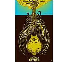 My Neighbor Totoro Photographic Print