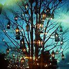 Lantern Tree by kchase