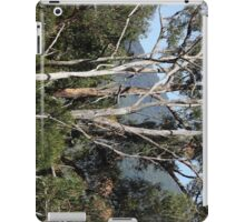 Gum trees iPad Case/Skin