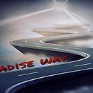PARADISE WAY by lykos1988