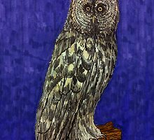 Illustrative owl at night by CClaesonDesign
