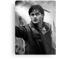 Harry Potter Metal Print