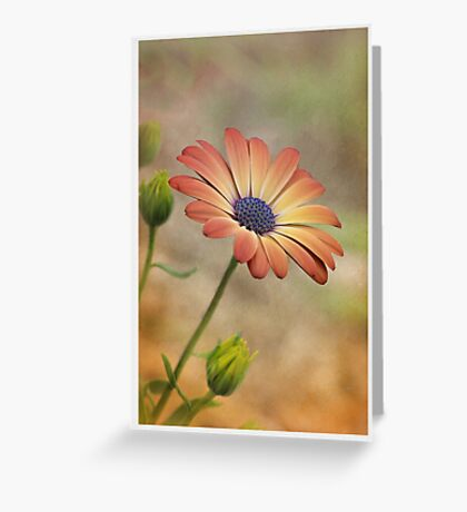 Peach Magic Greeting Card