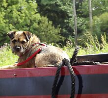 Just A Dog And His Boat by Hannah Taylor