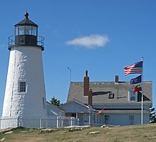 Pemaquid Point Lighthouse by Monnie Ryan