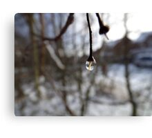 One Drop Canvas Print