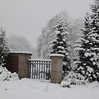 Winter's Solace by alamarmie