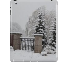 Winter's Solace iPad Case/Skin