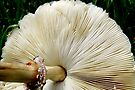 Under the Mushroom by AuntDot
