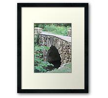 Bridge and the Redbud Tree Framed Print