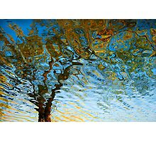 Flowing Tree 1 Photographic Print