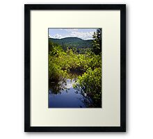 Knee Deep in a Bog Framed Print