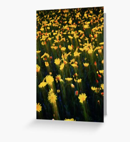 Flower Streaks Greeting Card