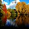OCTOBER AVATAR ~ Autumn In Your Country
