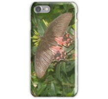 Brown Butterfly iPhone Case/Skin