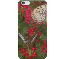 Butterfly Friends iPhone Case/Skin