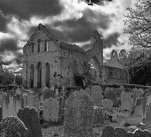 Old Bones by vambo777