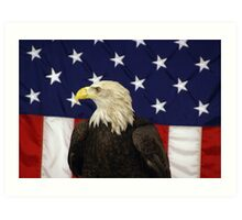 Bald Eagle & The American Flag Art Print