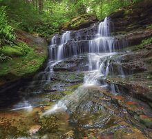 Ricketts Glen State Park by Aaron Campbell