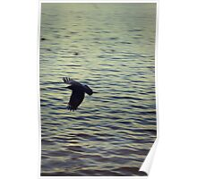When the crow flies Poster