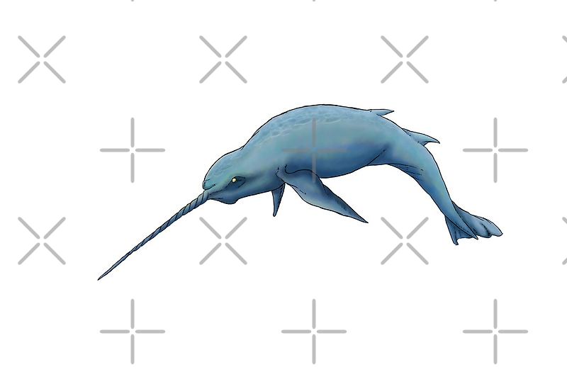 Narwhal by Anuviel