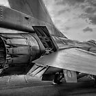 F 16 Power by Delfino