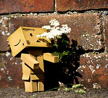 Danbo - Flower Sniffin' by James Richardson