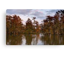 Swamp at Sunrise, Lake Martin, Breaux Bridge, Louisiana Canvas Print