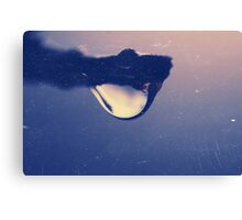 Water drop on the branch Canvas Print