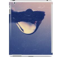 Water drop on the branch iPad Case/Skin