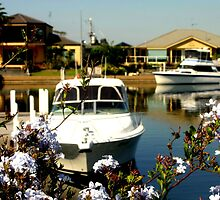 The rich & famous ~ Paynesville ~ Australia by Chris Chalk