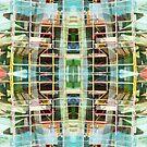 scaffold 21 by H J Field